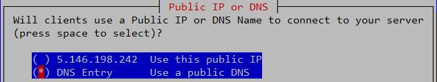 Public IP or DNS